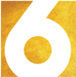 6temik Logo